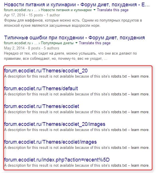 Запрет индексации в Google
